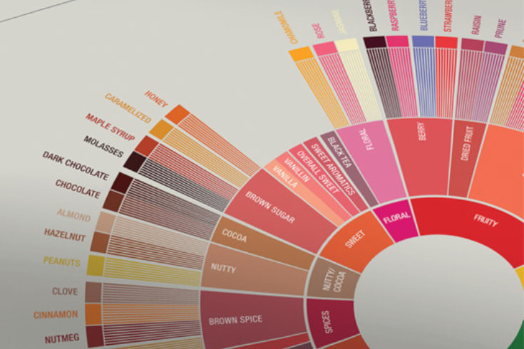 Scaa Flavor Wheel One Darnley Road Design 03